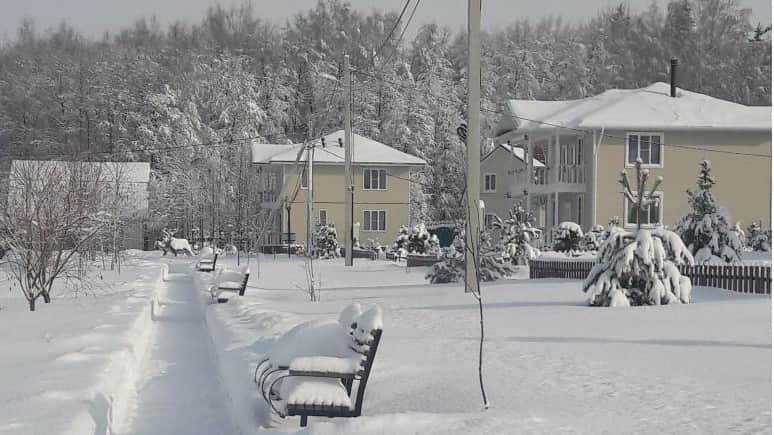 Снежная зима. Терехунь